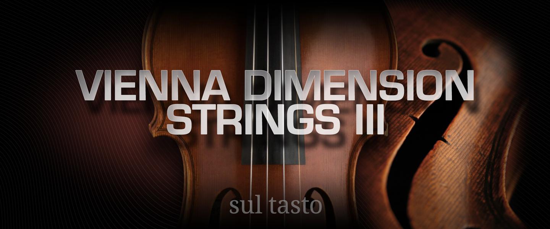 Vienna Dimension Strings III