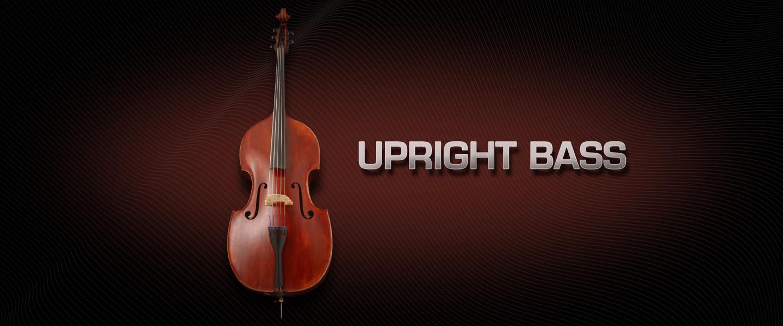 EmbNav_UprightBass_1440x600