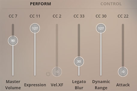 Synchron Player Perform View