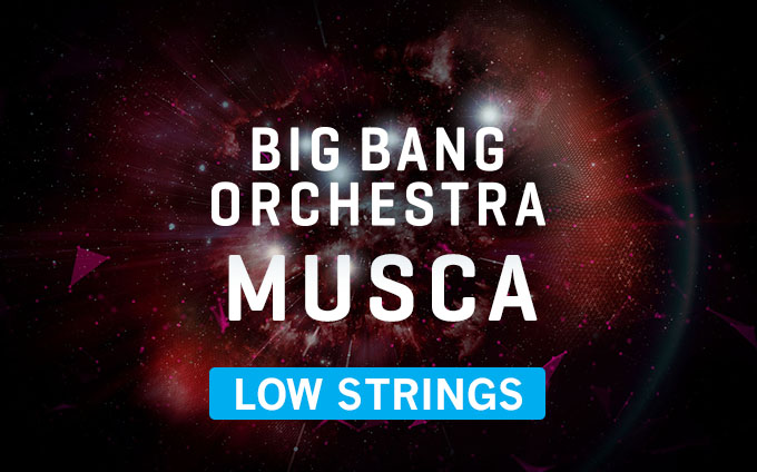 Big Bang Orchestra: Musca