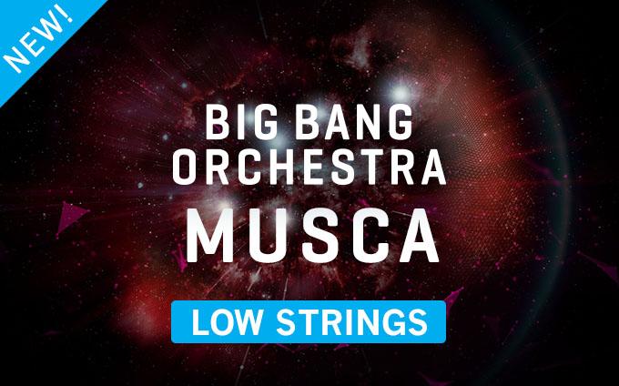 Big Bang Orchestra: Musca