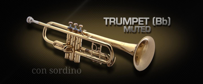 EmbNav_TrumpetBmuted_d_1440x600