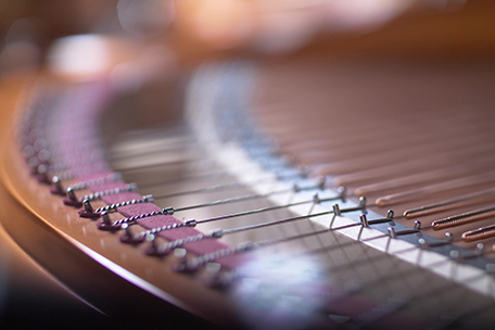 Bösendorfer Imperial Strings rear