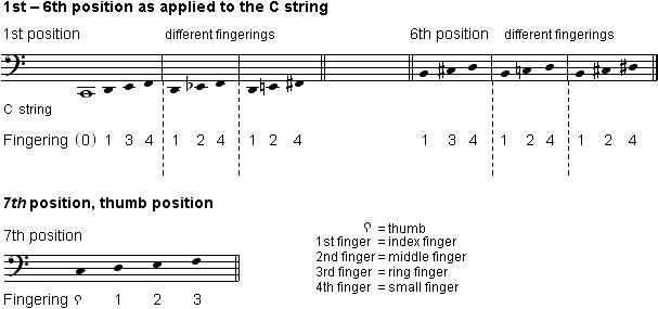 VC_sound-production_Cstring_6pos_en_607x285.png
