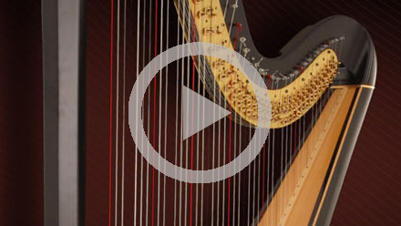 Video_thumbnail_Harps_220x124.jpg