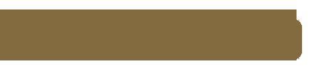 logo_adamaudio