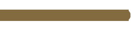 logo_austrianaudio