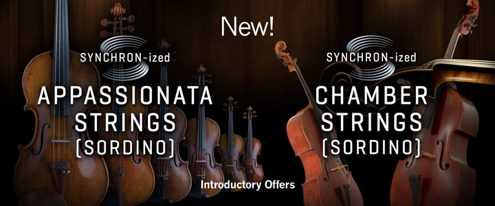 SYzd Chamber Appass Strings Sordino