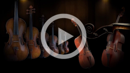 Synchron-ized Chamber & Appassionata Strings (sordino)